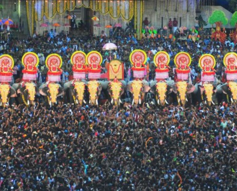 A glimpse of the elephants standing amidst the crowd during the festival