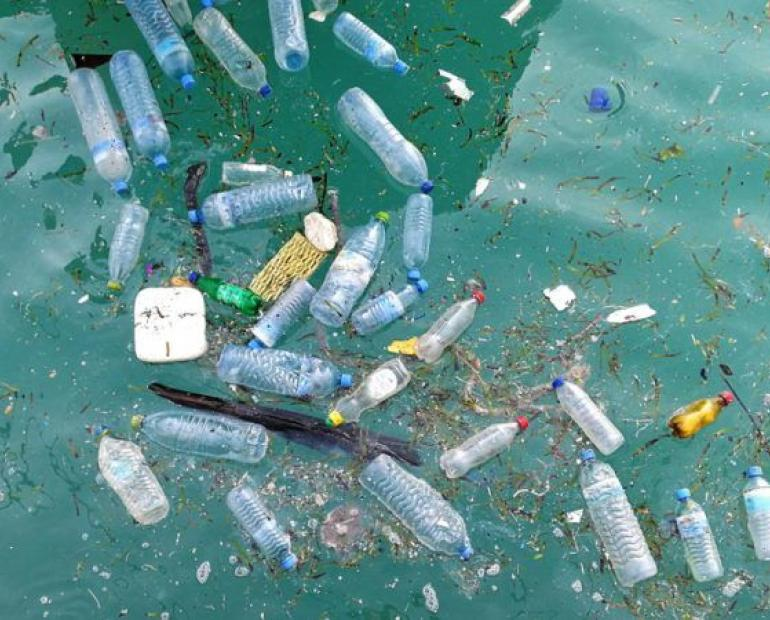 This is an image of plastic bottles floating in the ocean.