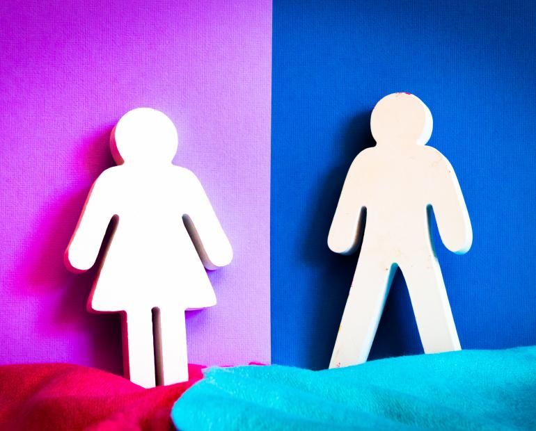 A cut-out of a male and female signs against blue and pink backgrounds.