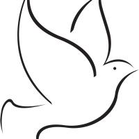 La imágen es una paloma que representa libertad.