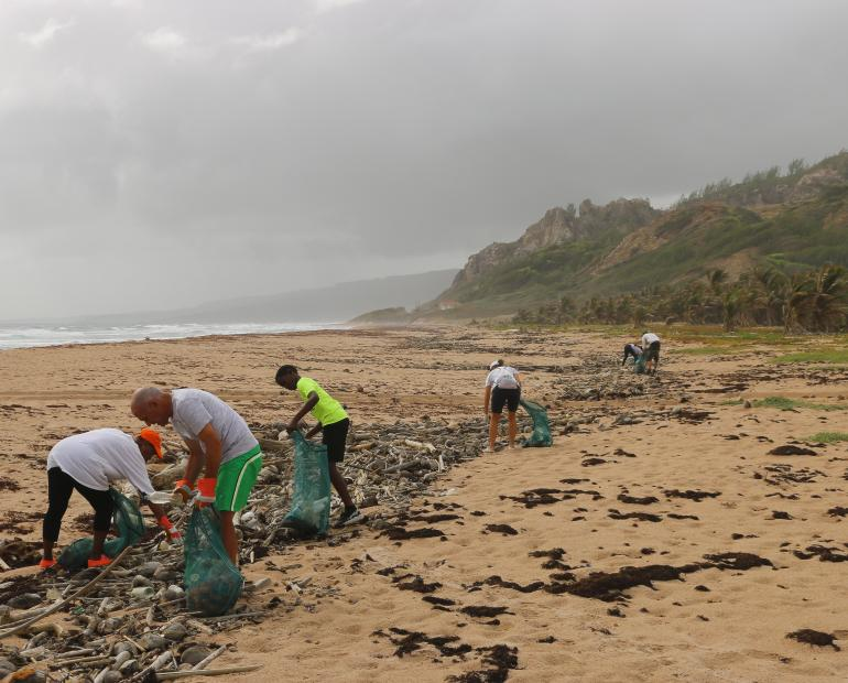 A group of people performing a beach cleanup
